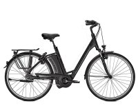 Raleigh Dover Impulse 8R HS 8G 14,5Ah 36V Wave 28 black matt