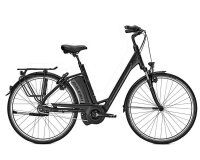 Raleigh Boston 8R HS 8G 13Ah 36V Wave 28 magicblack matt